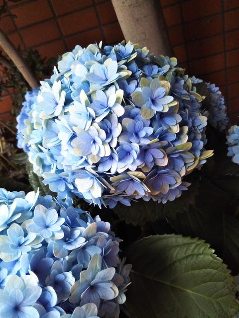 20-05-19-16-53-21-644_photo