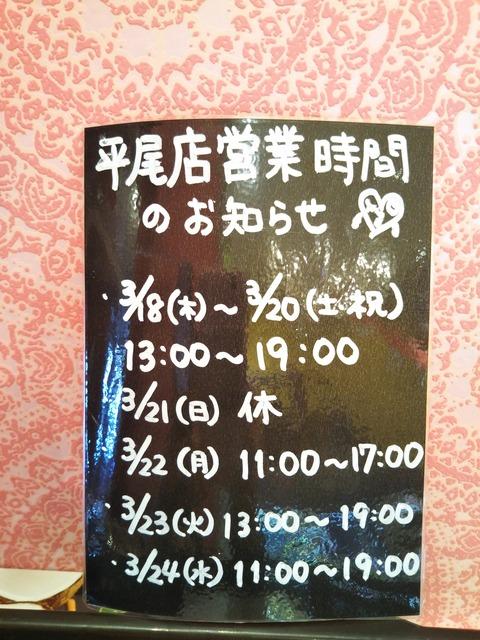21-03-17-13-59-05-582_photo