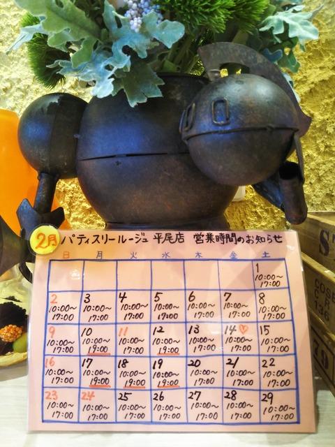 20-02-04-10-36-52-354_photo