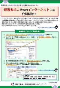 ハローワーク インターネット サービス 障害 者