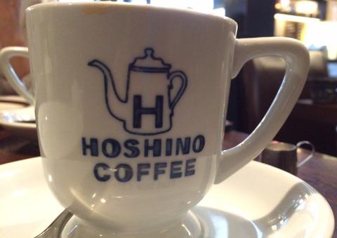 20150913hoshino