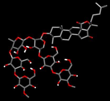 holotoxin