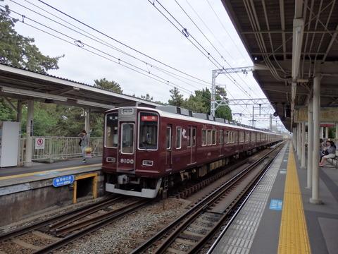P5030022