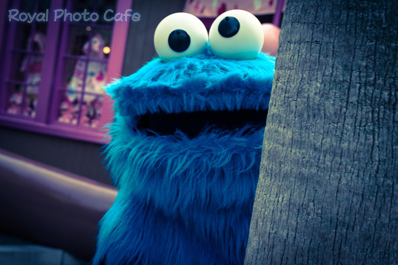たまにはクッキーモンスター ケロケロちゃんねる ブログ版