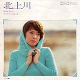 B_okazaki disc