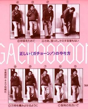 crz8_tani_gachooon2