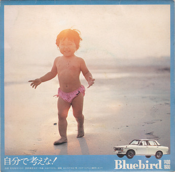 bluebird_2