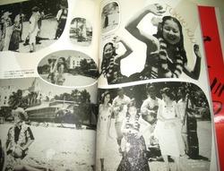 book_hibari2