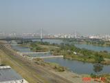 20061110水制の復原工事