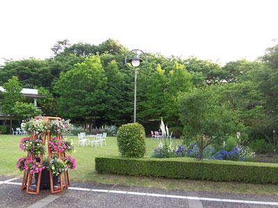 恵泉女学園大学の美しい眺め2