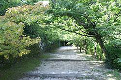 仁比山神社3