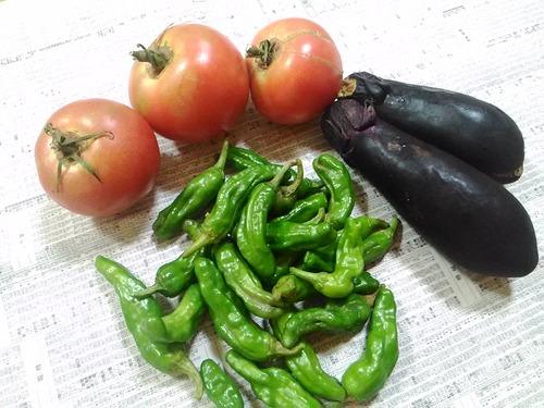 野菜20160725