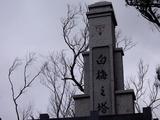 白梅の塔1