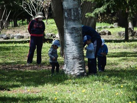 令2-5-15常磐公園幼稚園園児等