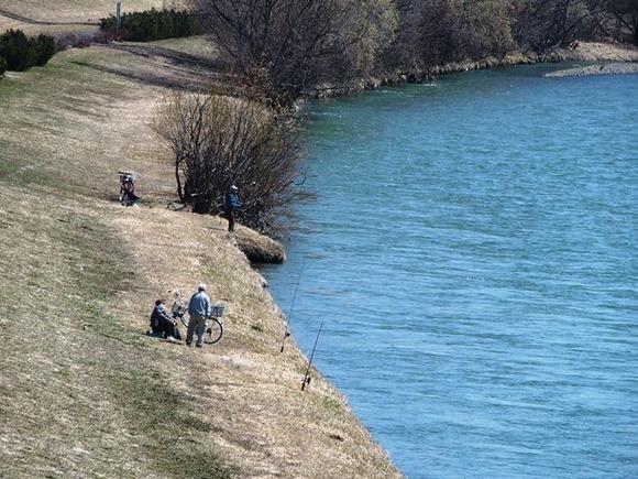 令和3-4-11旭西橋から石狩川、釣り人等