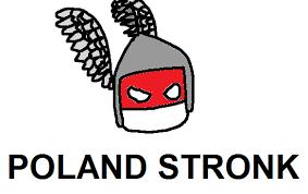 2014_08_04 POLAND STRONK