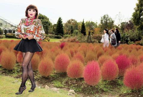 花ファンタジア01/清水公園