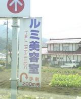 d6358f00.jpg