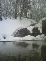 鯉川温泉 滝見の湯