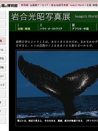 たばこと塩の博物館05
