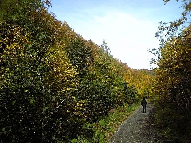 銀泉台赤岳道01
