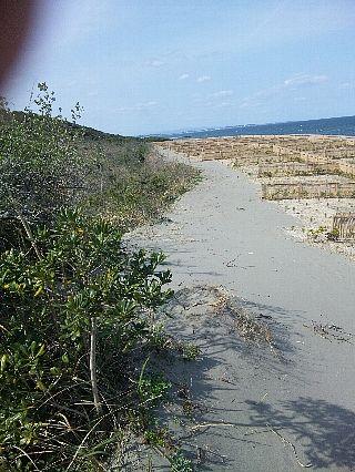 とちぎ海浜自然の家06
