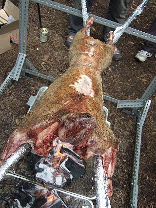 羊丸焼き03(腹面)