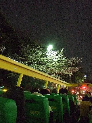 夜桜バスツアー08