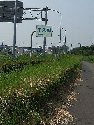 牛久沼01