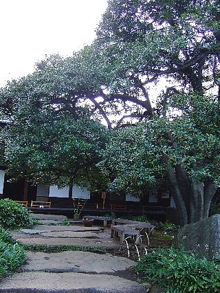 旧岩崎邸05