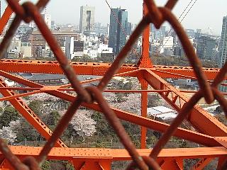 東京タワー(階段3)