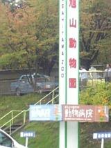 旭山Zoo看板