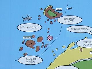 岩礁観光00