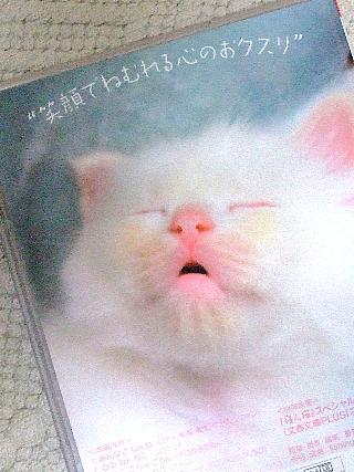 寝ん猫02