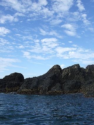 岩礁観光03