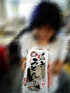 minako_udon