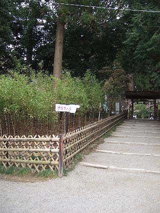 偕楽園05