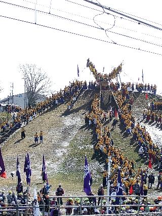 御柱祭り13