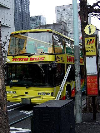 夜桜バスツアー01