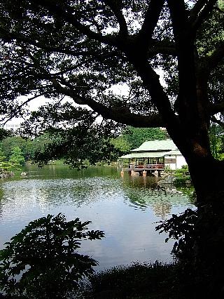 清澄庭園05