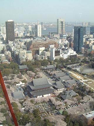 東京タワー(150M1)