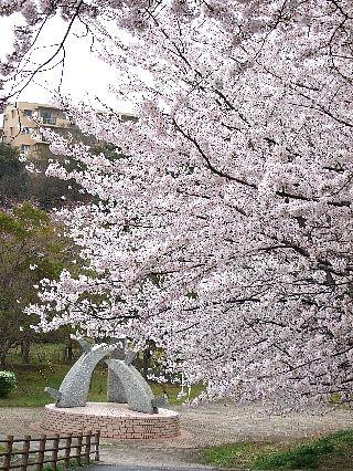 0409桜00