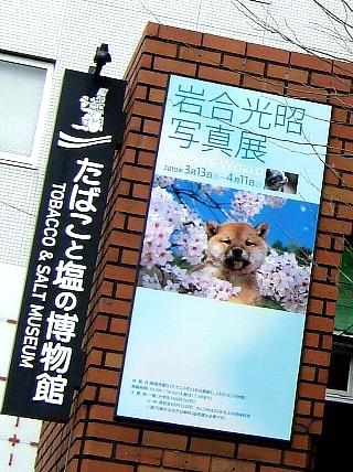 たばこと塩の博物館02