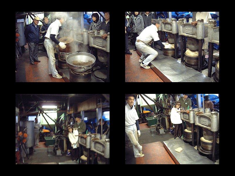 椿油製油作業
