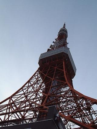東京タワー(見上げ夕)