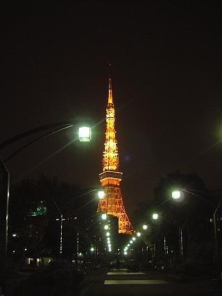 東京タワー(夜桜)遠景1
