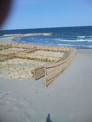 とちぎ海浜自然の家07