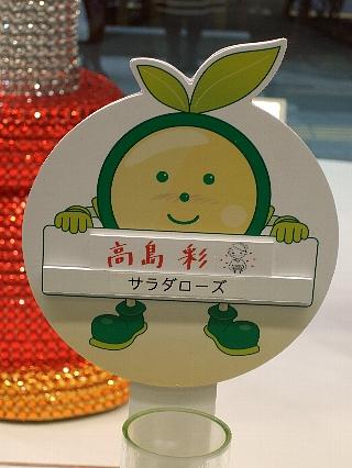 銀座サラダローズ15日後03