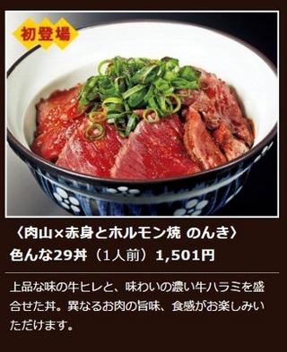 肉博HPホルモン色んな29丼