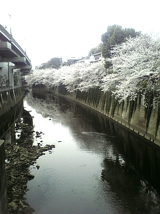 江戸川橋から